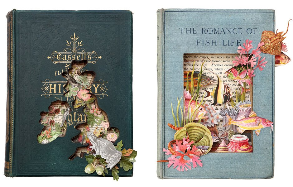 Cassells-Illustrated-History-of-England-II-and-The-Romance-of-Fish-Life