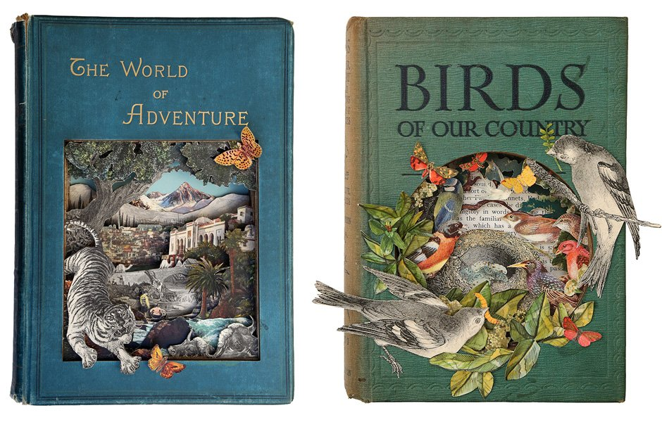 The-World-of-Adventure-and-Birds-of-our-Country