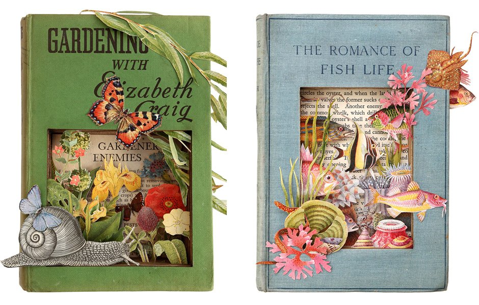 gardening-with-elizabeth-craig-and-The-Romance-of-Fish-Life